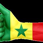 セネガルの村人の人情と『MILU』の共通点